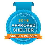 Adopt A Pet | Approved Shelter